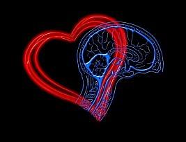 Como Desenvolver A Inteligência Emocional: Guia Passo a Passo